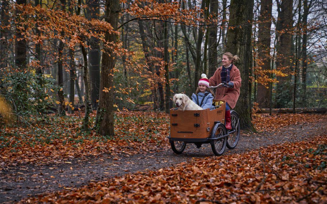 Förderung für Lastenräder der Stadt Gunzenhausen